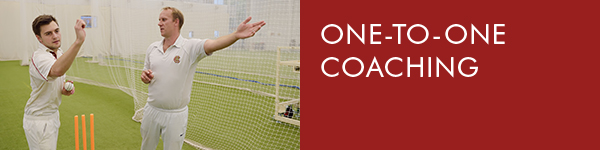 2 Perform Analysis One to one coaching