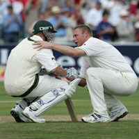 Andrew Flintoff and Brett Lee