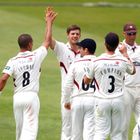 Somerset celebrate a wicket