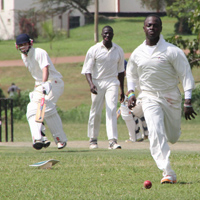 Cricket at Kyambogo Oval