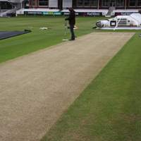 The ODI pitch