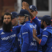 england cricket team celebrate a wicket