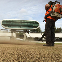 fine turf work at Lord's