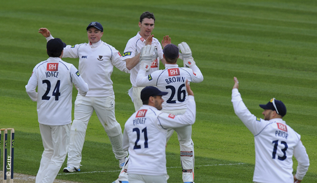 Sussex players celebrate a wicket